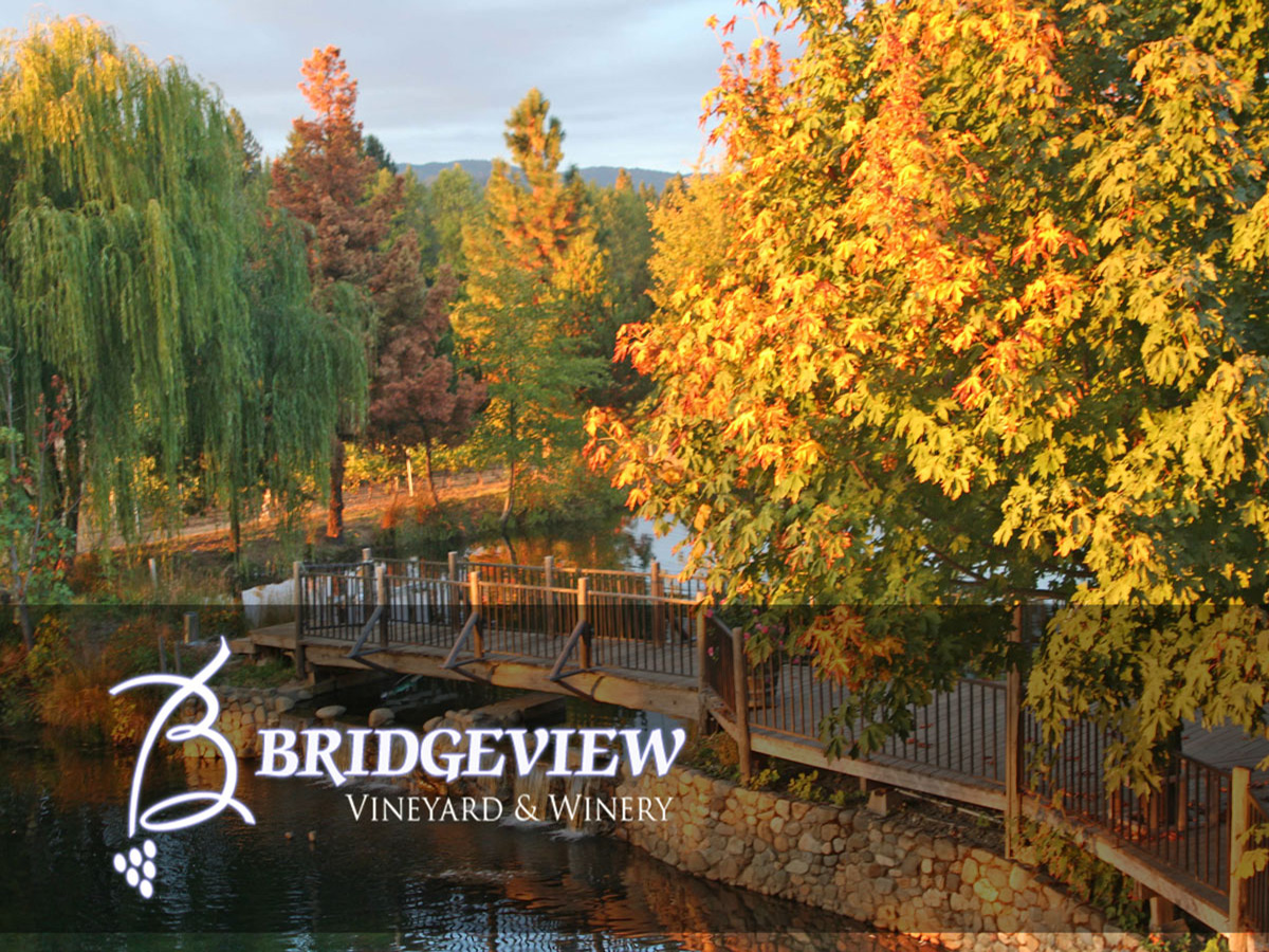Bridgeview Grounds